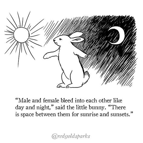 "page 2: black ink illustration of a rabbit standing between a moon and a sun.  Text: ""Male and female bleed into each other like day and night,"" said the little bunny. ""There is space between them for sunrise and sunsets."""