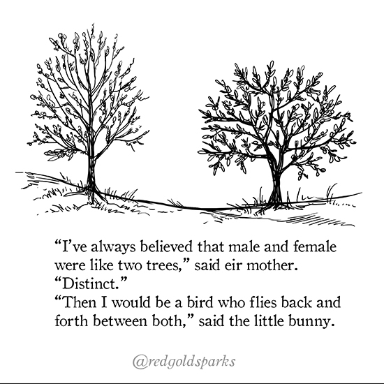 "Black ink illustration of 2 trees. Text: ""I've always believed that male and female were like two trees,"" said eir mother. ""Distinct."" ""Then I would be a bird who flies back and forth between both,"" said the little bunny."