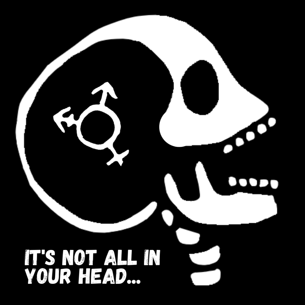 Digital art of a white skull with their mouth open and the transgender symbol positioned on and in their head. White text on the black background reads 'It's not all in your head ...'